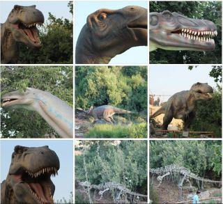 Королевство динозавров в Иерусалиме, фоторепортаж Израиль в лицах